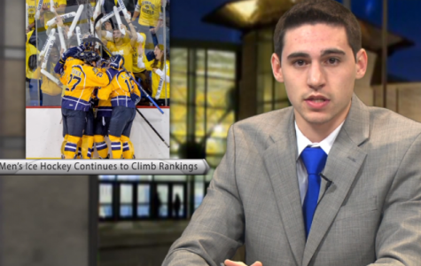 Sports Paws: 11/11/13