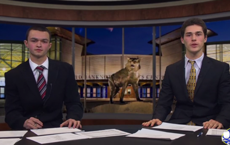 Sports Paws: 2/17/14