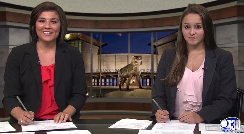 Sports Paws: 10/14/14