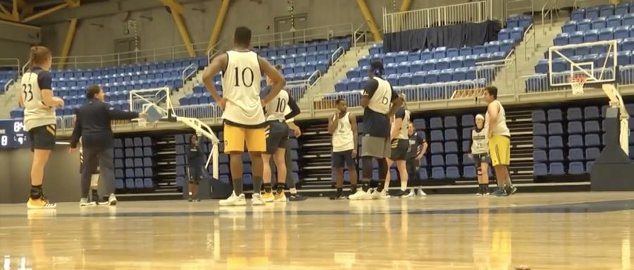 Meet the men of the women's basketball family