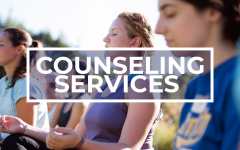 Demand for Counseling Services Increases