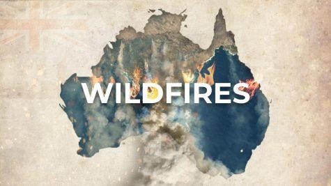 Wildfires sparking celebrity action