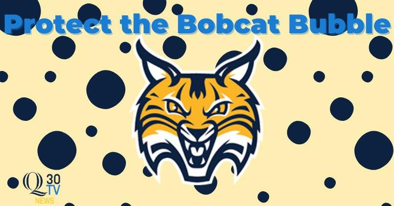 Protect the Bobcat Bubble