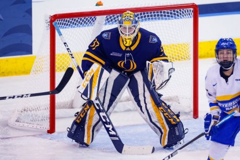 Quinnipiac Women's Ice Hockey Splits Weekend With No. 10 Clarkson