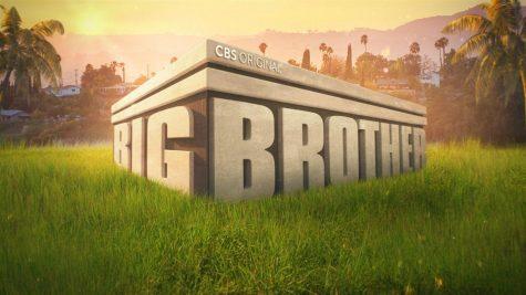 Big Brother Season 23 Review